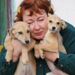 Elena und 2 Puppies