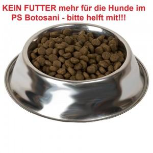 Futter (2)